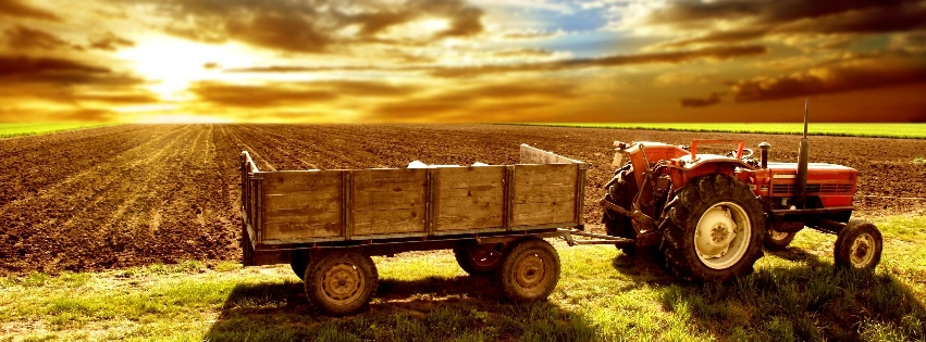 1372614159_typical-tractor-outside-his-field_facebk